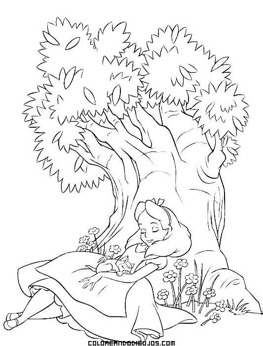 Alicia duerme en el bosque