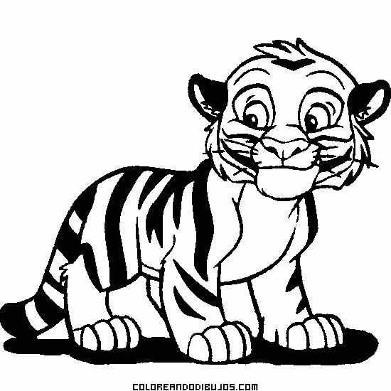 coloring pages of white tigers - photo#21
