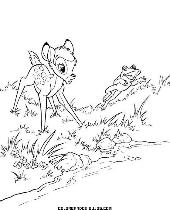 Bambi sorprendido