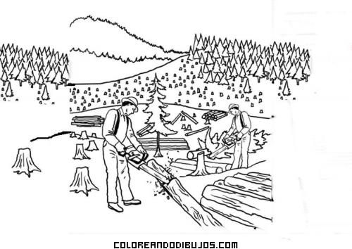 Dibujo de bosque talado para colorear