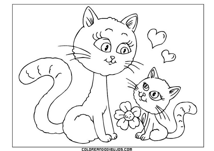 Gatito felicita a su mamá en el día de la madre