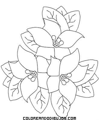 de flores para colorear