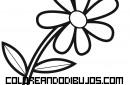 Dibujo de una sencilla flor